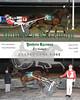 20170323 Race 5-Classy Lane Rose