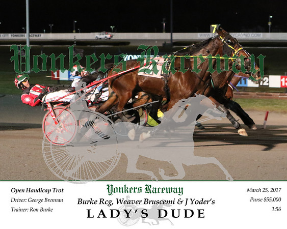 20170325 Race 11- Lady's Dude