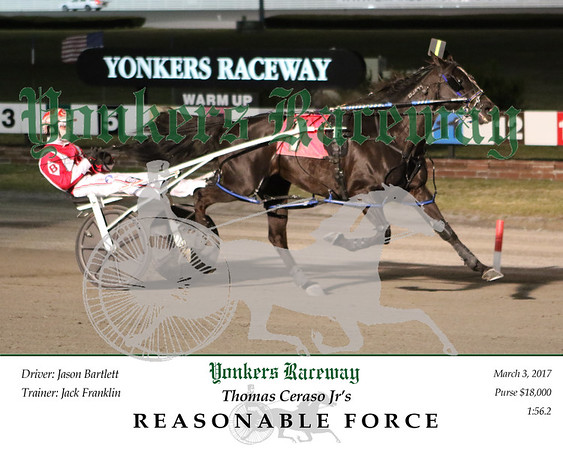 20170303 Race 1- Reasonable Force
