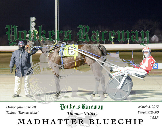 20160304 Race 2- Madhatter Bluechip