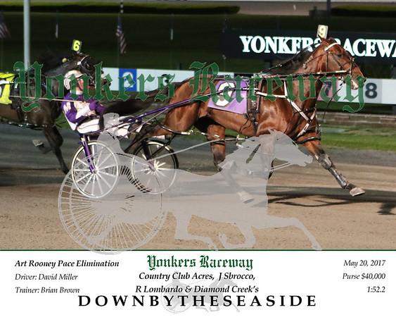 20170520 Race 8- Downbytheseaside 2