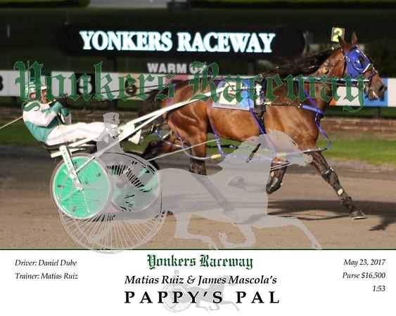 20170523 Race 5- Pappy's Pal 2