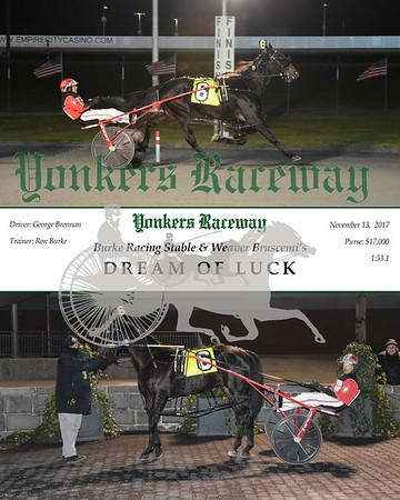 11132017 Race 9-Dream Of Luck