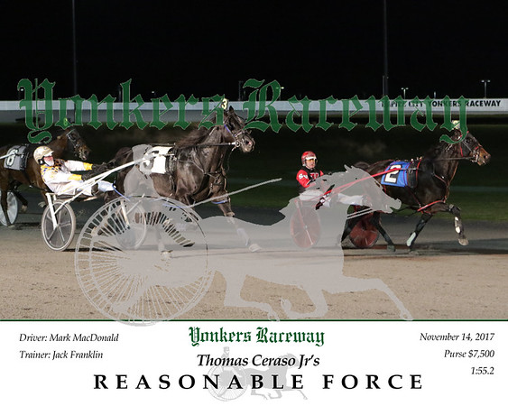 20171114 Race 7- Reasonable Force