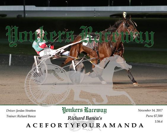 20171114 Race 2- Acefortyfouramanda