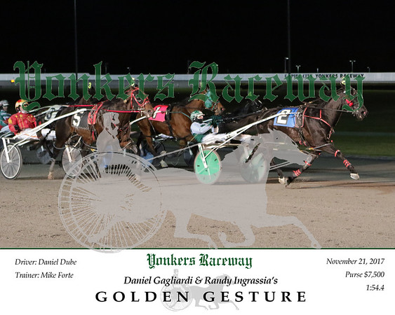 20171121 Race 5- Golden Gesture 2