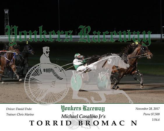 20171128 Race 5- Torrid Bromac N 2