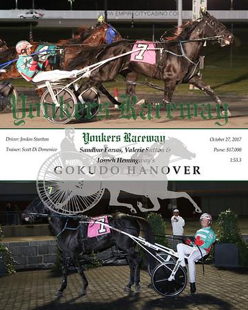 20171027 Race 4- Gokudo Hanover