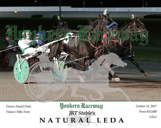 20171031 Race 7- Natural Leda 2