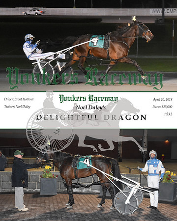 20180420 Race 11- Delightful Dragon