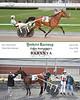 20180424 Race 1- Barynya