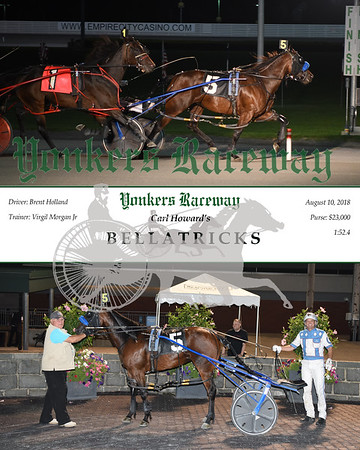 20180810 Race 11-Bellatricks