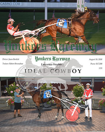 20180810 Race 3-Ideal Cowboy