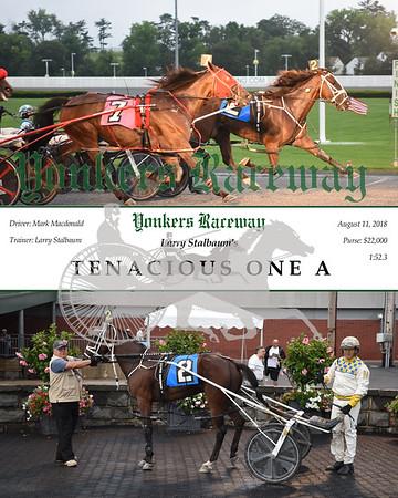 20180811 Race 2-Tenacious One A