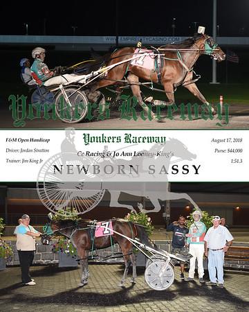 20180817 Race 6-Newborn Sassy