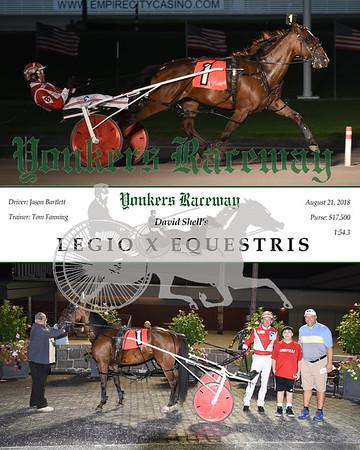 20180821 Race 8-Legio X Equestris