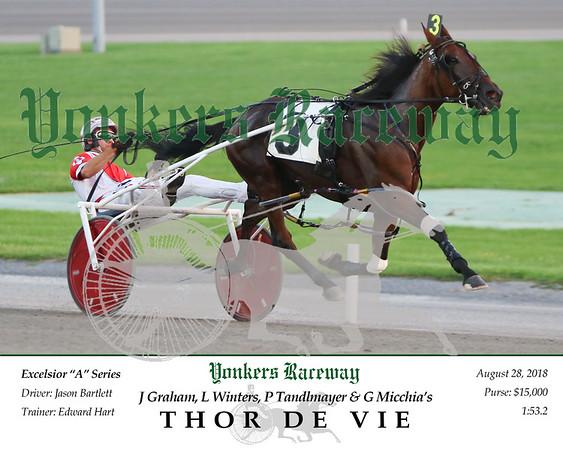 20180828 Race 2- Thor De vie