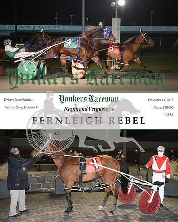 20181211 Race 5- Fernleigh Rebel