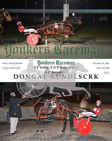 20181211 Race 7- Dongal Rundlscrk