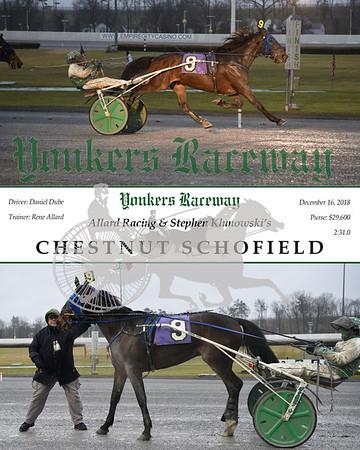 20181216 Race 5- Chestnut Schofield