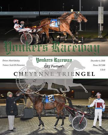 20181204 Race 9- Cheyenne Triengel