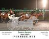 20180223 Race 2- Perfect Bet 2