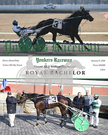 20180121 Race 5- Royal Bachelor