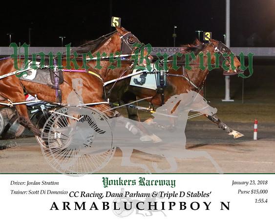 20180123 Race 10- Armabluchipboy N 2