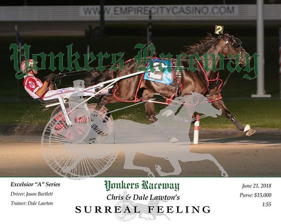 20180621 Race 8- Surreal Feeling 2