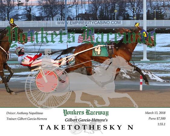 20180313 Race 1- Taketothesky N 2
