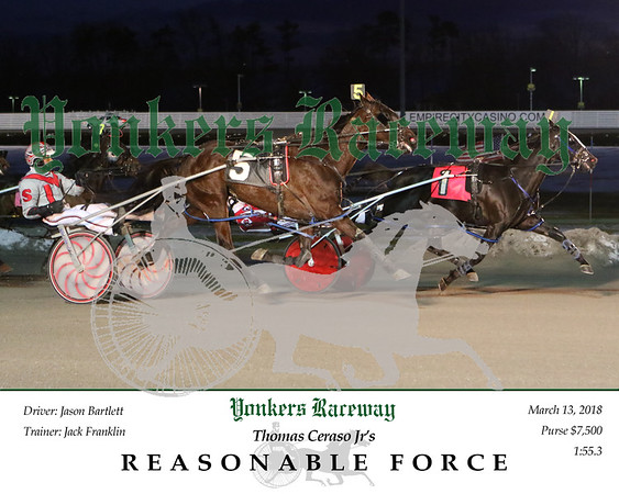 20180313 Race 2- Reasonable Force 2