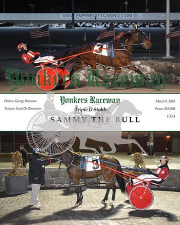 20180309 Race 3- Sammy The Bull N