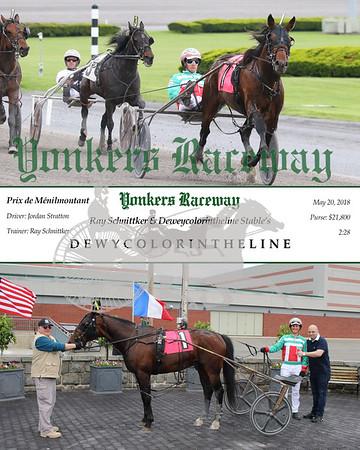 20180520 Race 3- Dewycolorintheline