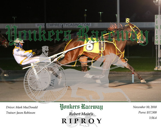 20181110 Race 1- Riproy 2