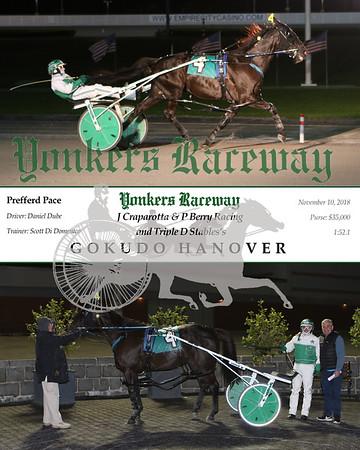 20181110 Race 8- Gokudo Hanover