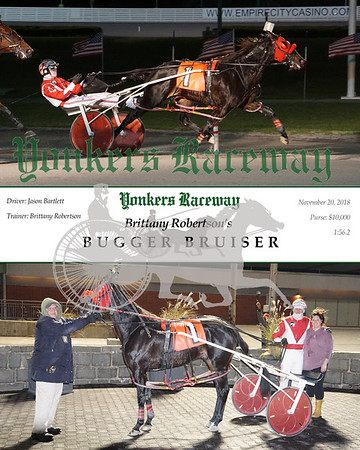 20181120 Race 4- Bugger Bruiser