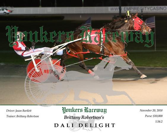 20181120 Race 2- Dali Delight 2