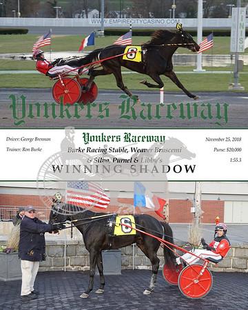 20181125 Race 11- Winning Shadow