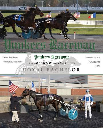 20181125 Race 9- Royal Bachelor