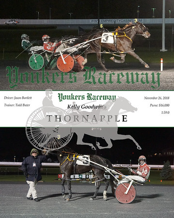 20181126 Race 4- Thornapple