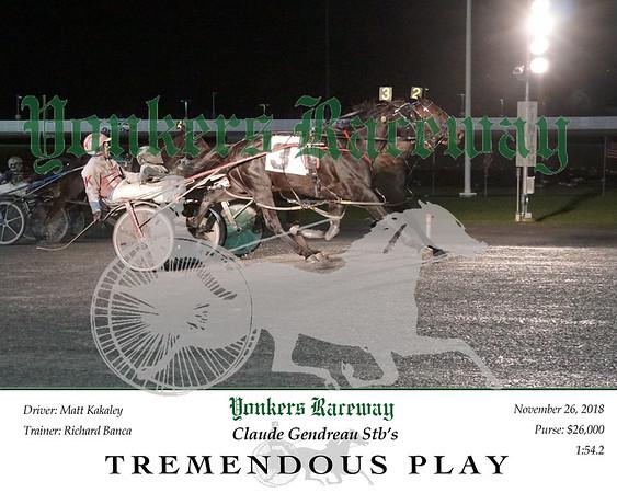 20181126 Race 11- Tremendous Play