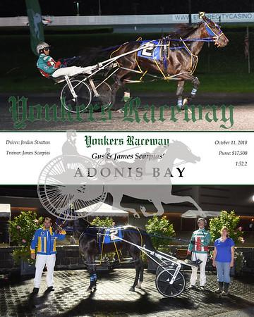 20181010 Race 1-Adonis Bay