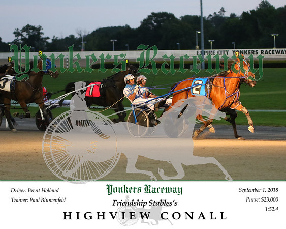 20180901 Race 2- Highview Conall N