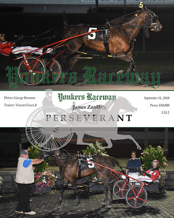 20180911 Race 3-Perserverant