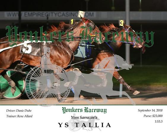 20180914 Race 10- YS Tallia