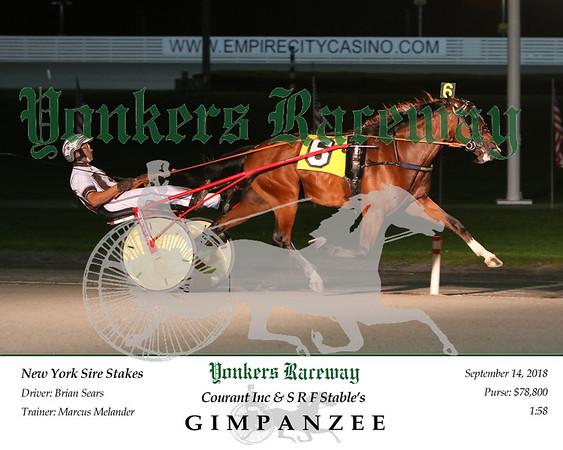 20180914 Race 8- Gimpanzee