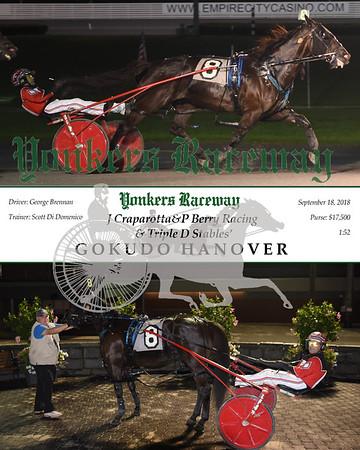 20180918 Race 7-Gokudo Hanover