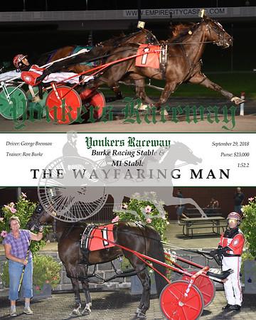 20180929 - Race 4 - THE WAYFARING MAN