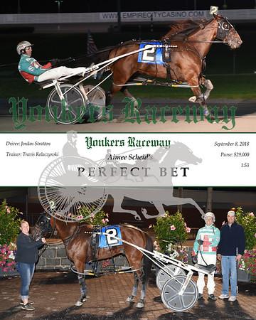 20180908 Race 12-Perfect Bet