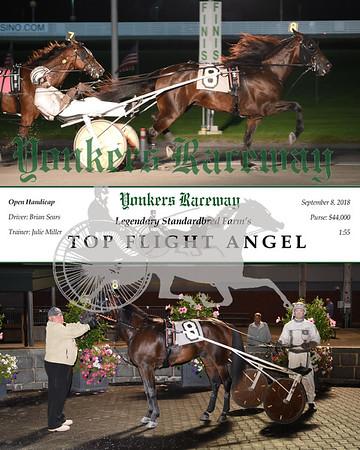 20180908 Race 9-Top Flight Angel